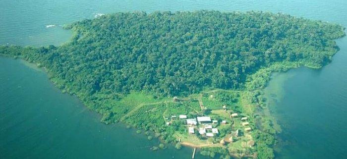 1 Day Ngamba-Island tour