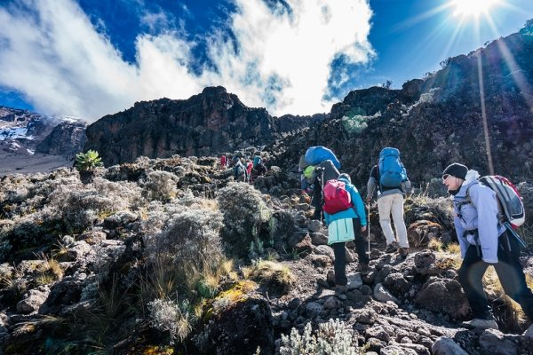 Trekking Mountain Kilimanjaro